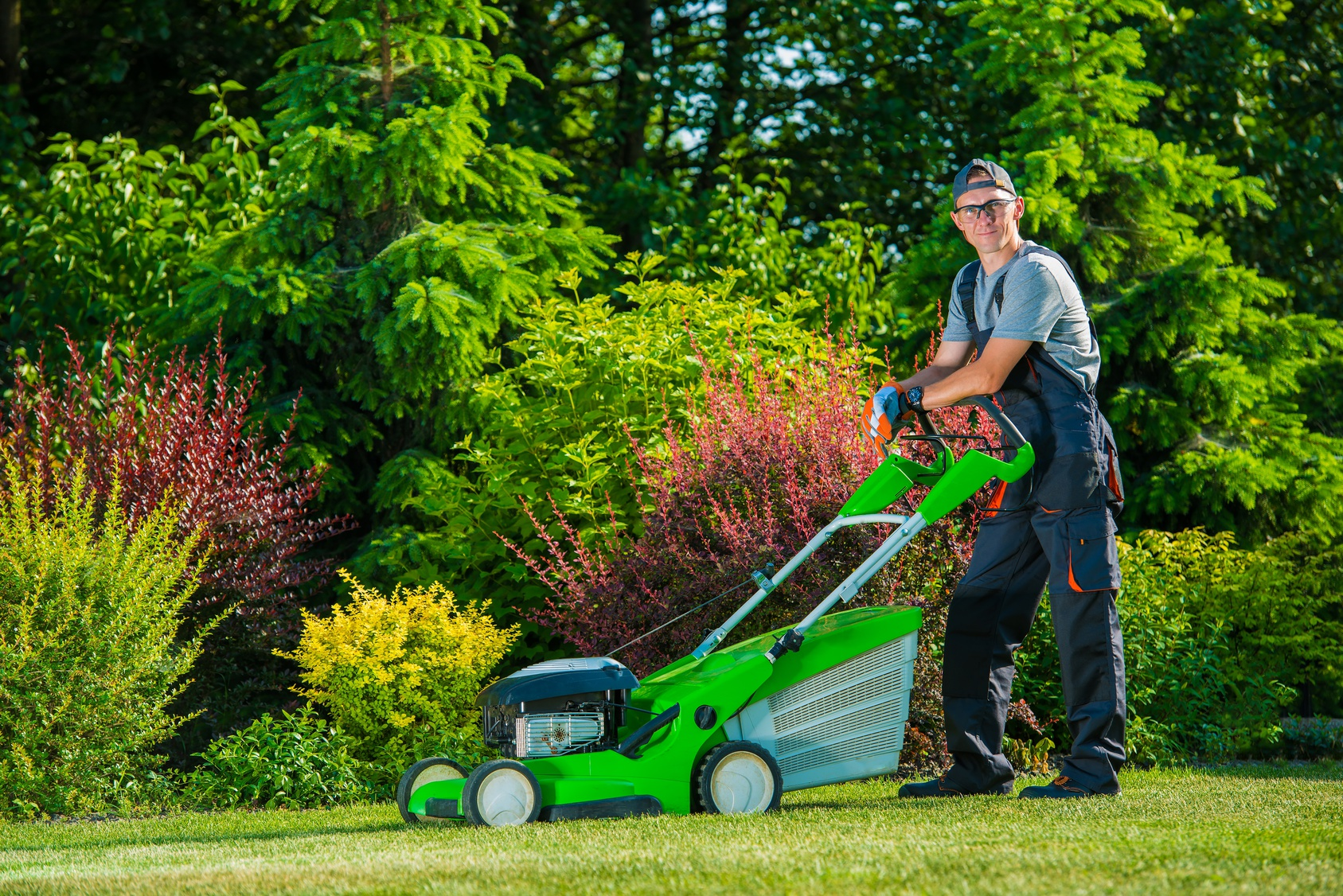 5 Steps To A Beautiful Lawn