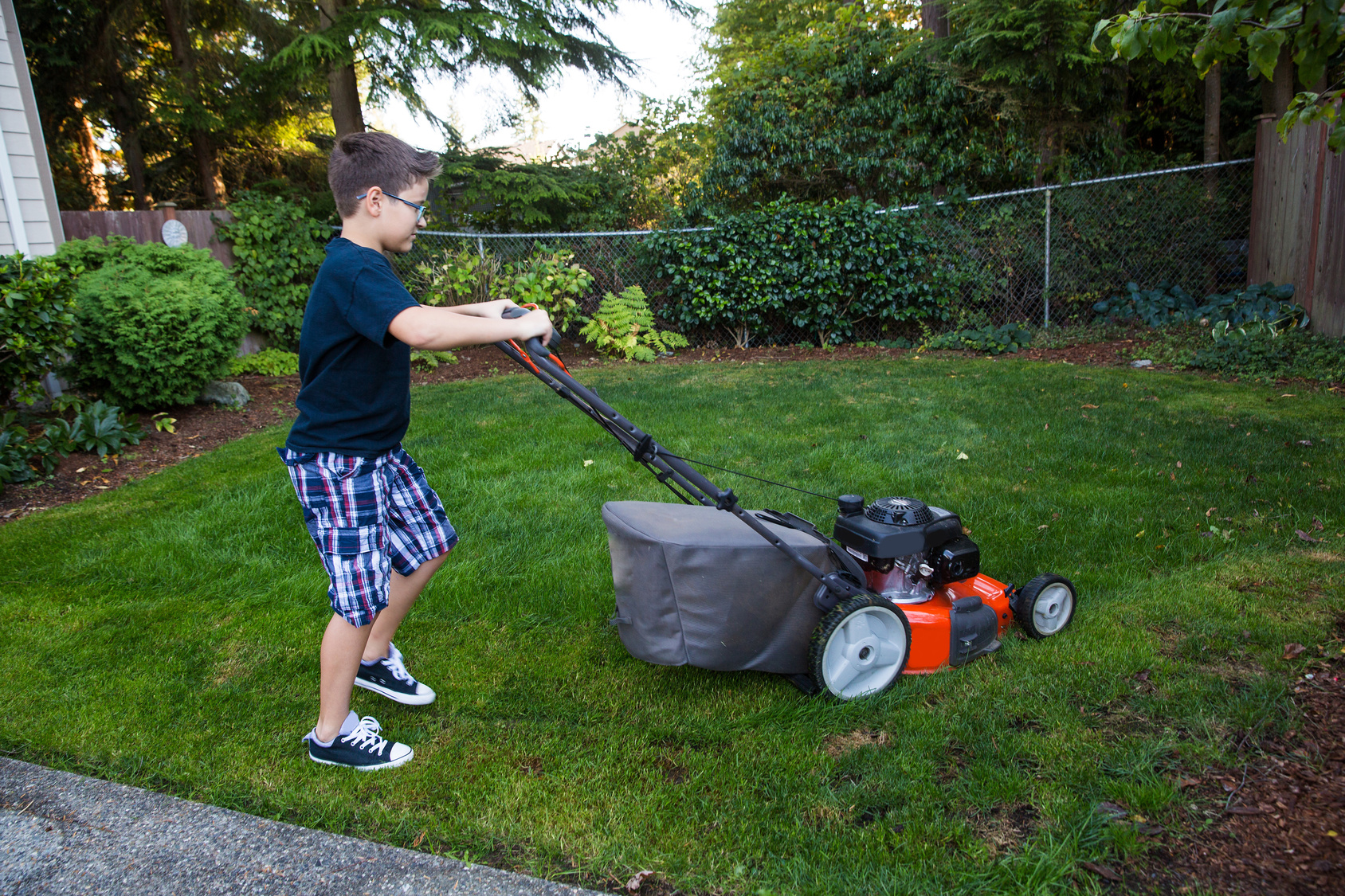 Lawn care maintenance tips and tricks for Lawn care and maintenance