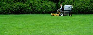 A lawn care technician mows a carpet-like lawn.
