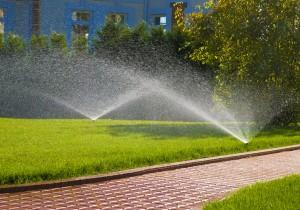 Watering the lawn in Flowery Branch